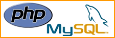 Diseño Web Publicidad Internet Marketing Digital
